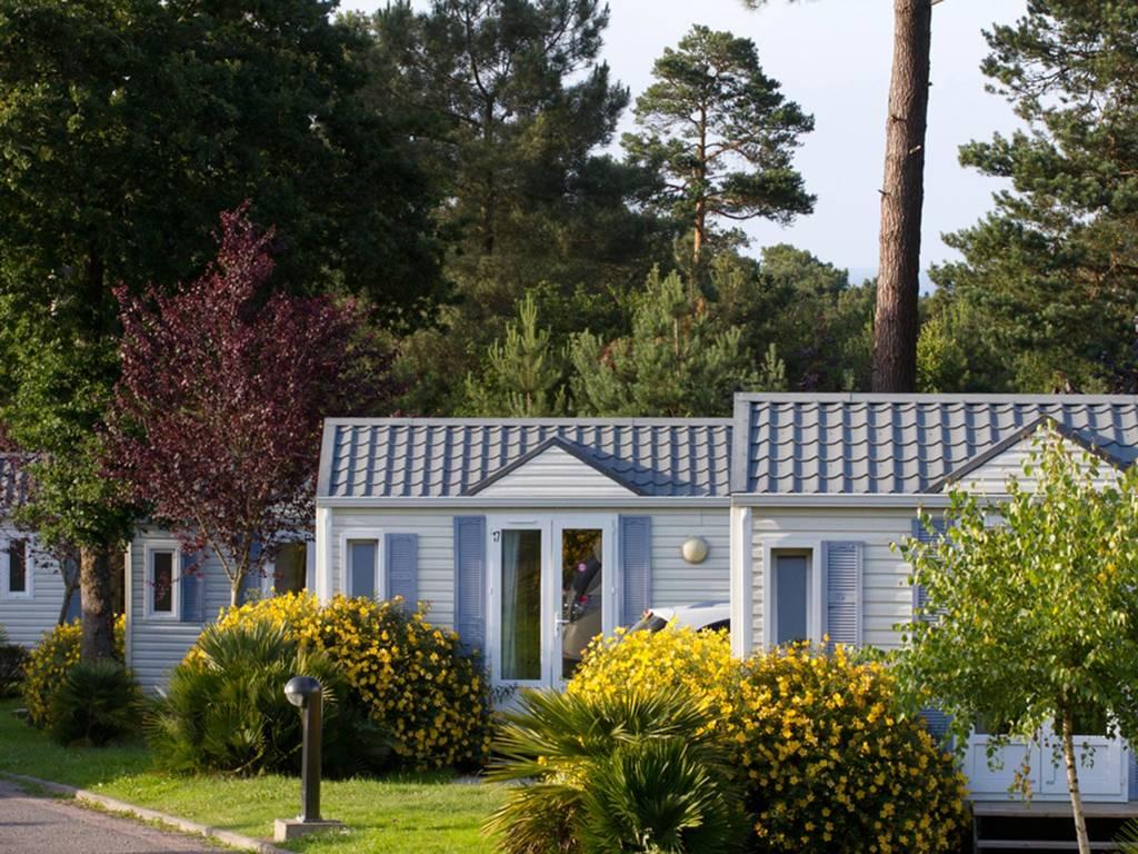 cottage flor s 4 5 personen 2 kamers 1 badkamer 3 bloemen. Black Bedroom Furniture Sets. Home Design Ideas