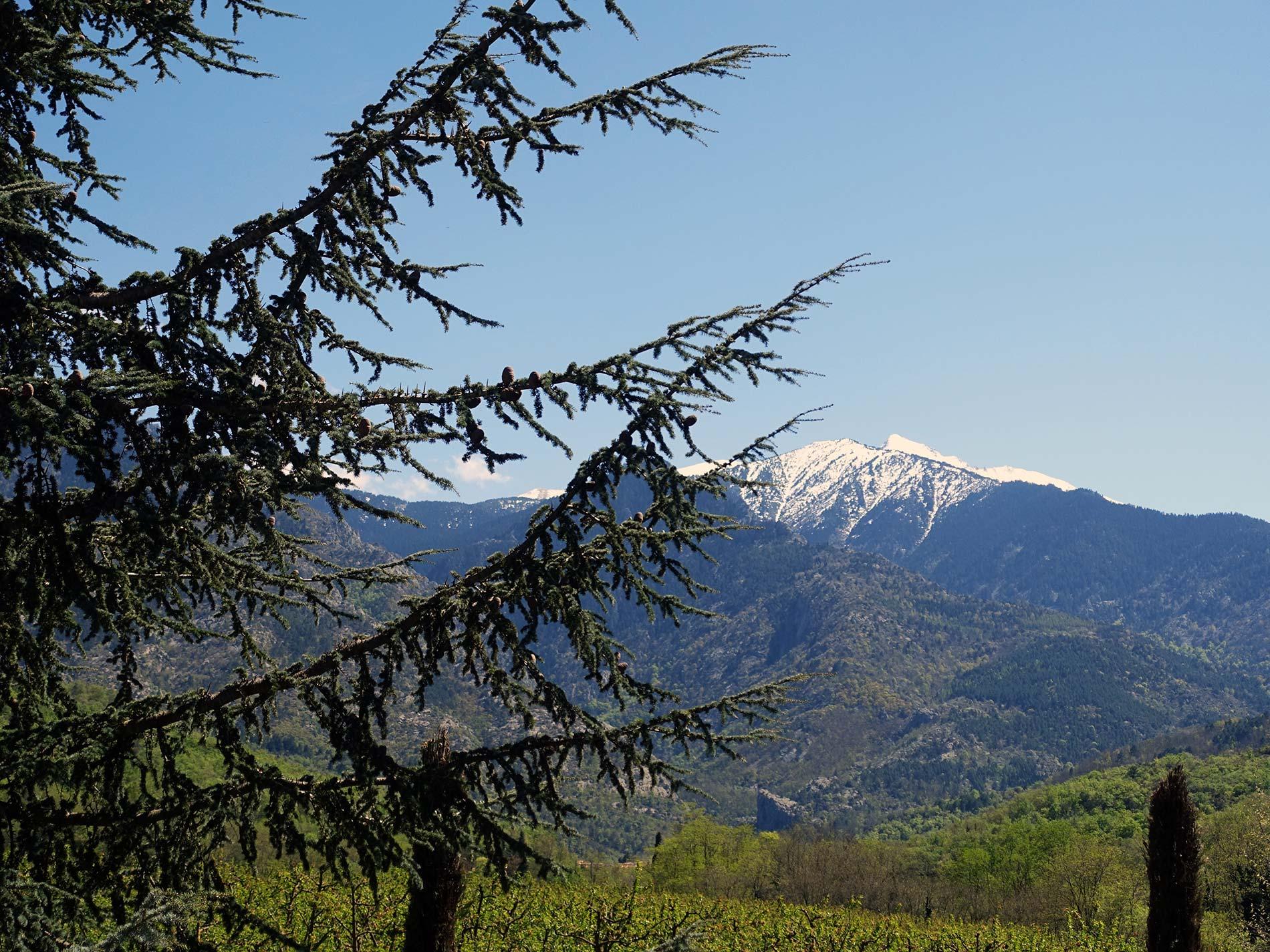 Camping bagn res de bigorre with yelloh village - Piscine bagneres de bigorre ...