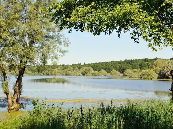 Camping Sainte-Marie-du-Lac-Nuisement