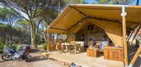 Camping Glamping - Tente Safari